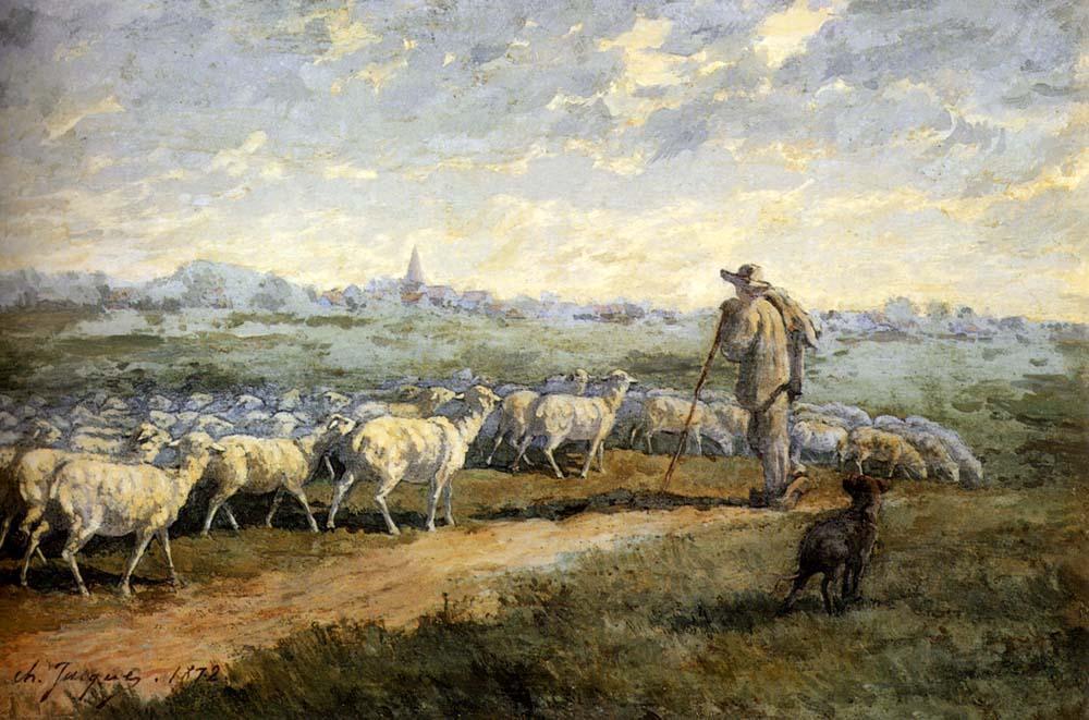 Pastore e gregge